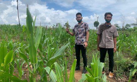 Di Sela Reses Sutomo Jabir Mengunjungi Lahan Pertanian dan Peternakan Warga Hingga Bermain Futsal